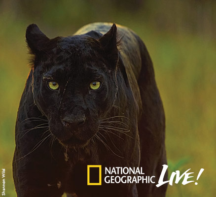 National Geographic Live—Pursuit of the Black Panther | Portland'5