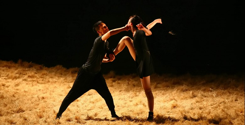 White Bird Dance presents BEIJING DANCE THEATER   White Bird Dance Series 2018/19   Wednesday, February 20, 2019, 7:30pm   Playing at: The Portland'5 Arlene Schnitzer Concert Hall