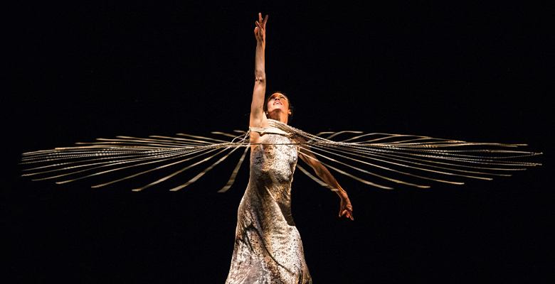 White Bird presents MOMIX - Viva MOMIX! (Connecticut) | October 3 - October 5, 2019 | Playing at: The Portland'5 Newmark Theatre