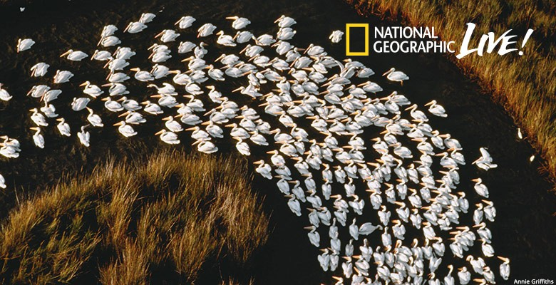 Portland'5 presents NATIONAL GEOGRAPHIC LIVE—PHOTOGRAPHY WITHOUT BORDERS | Annie Griffiths, Photojournalist | Monday, October 7, 2019, 7:30pm | Playing at: The Portland'5 Newmark Theatre